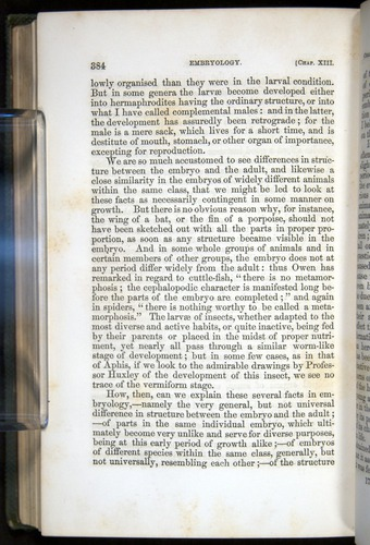 Image of Darwin-F377-1860-00384