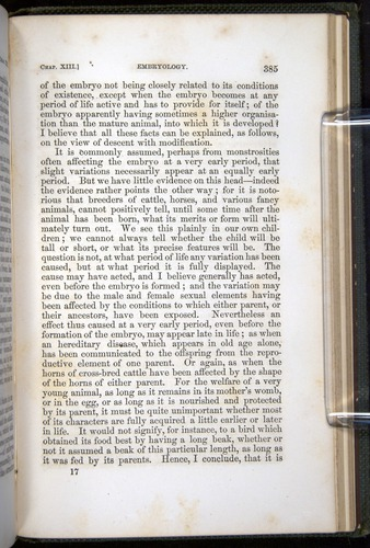 Image of Darwin-F377-1860-00385