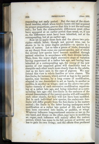 Image of Darwin-F377-1860-00388