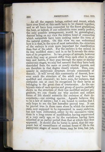 Image of Darwin-F377-1860-00390