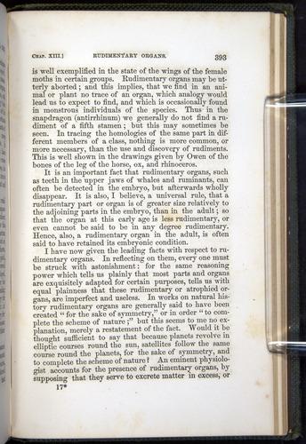Image of Darwin-F377-1860-00393
