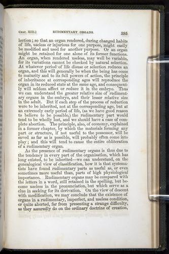 Image of Darwin-F377-1860-00395