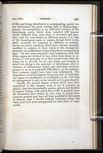 Image of Darwin-F377-1860-00397