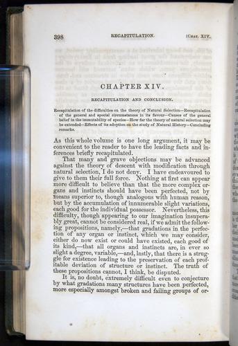 Image of Darwin-F377-1860-00398