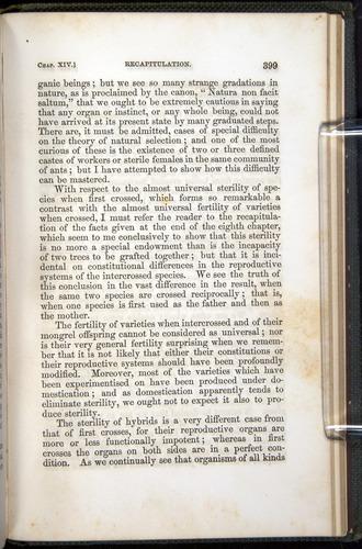Image of Darwin-F377-1860-00399