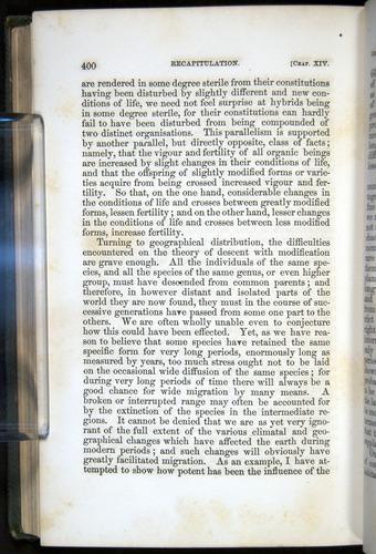 Image of Darwin-F377-1860-00400