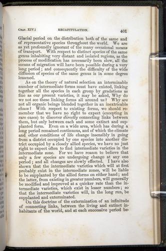 Image of Darwin-F377-1860-00401