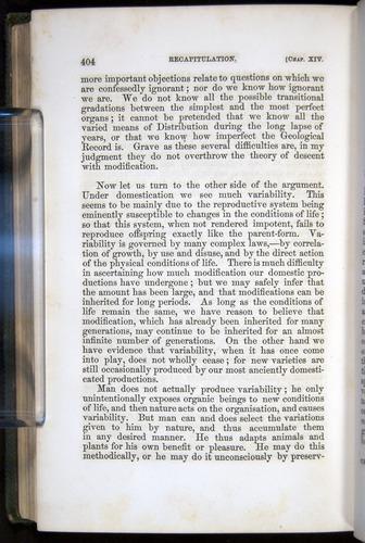 Image of Darwin-F377-1860-00404