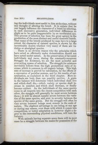 Image of Darwin-F377-1860-00405