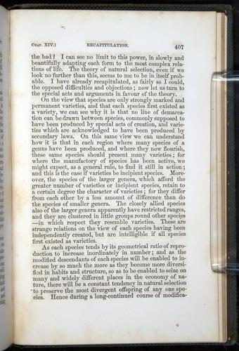 Image of Darwin-F377-1860-00407