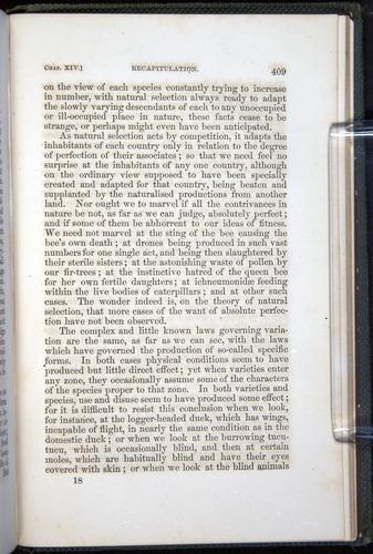 Image of Darwin-F377-1860-00409