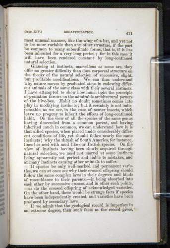 Image of Darwin-F377-1860-00411
