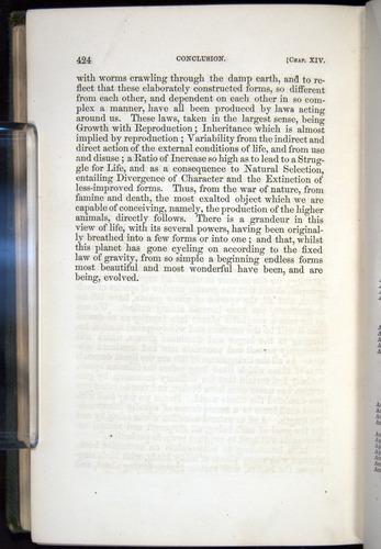 Image of Darwin-F377-1860-00424