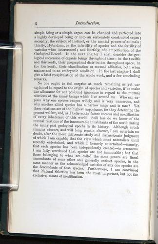 Image of Darwin-F401-1876-004