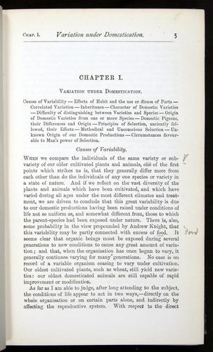 Image of Darwin-F401-1876-005