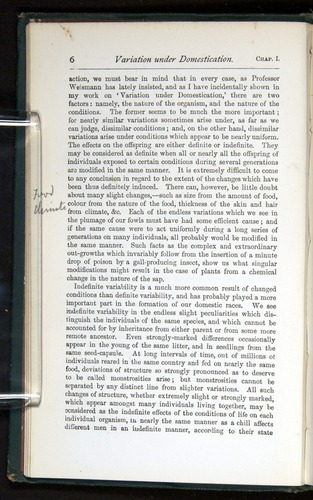 Image of Darwin-F401-1876-006