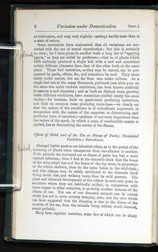 Image of Darwin-F401-1876-008