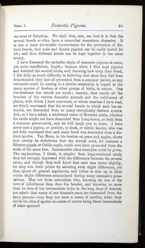 Image of Darwin-F401-1876-021