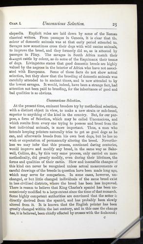 Image of Darwin-F401-1876-025
