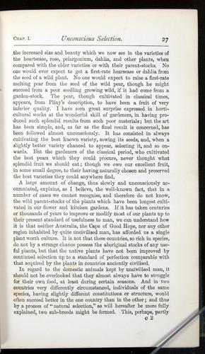 Image of Darwin-F401-1876-027