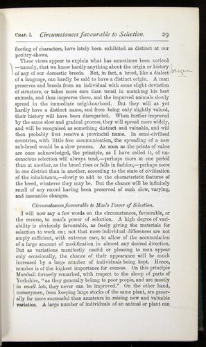 Image of Darwin-F401-1876-029