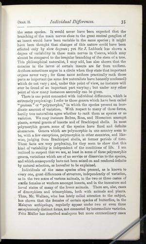 Image of Darwin-F401-1876-035