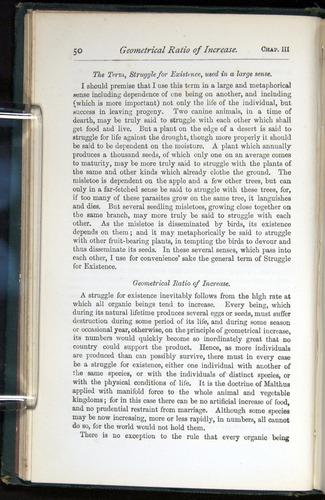 Image of Darwin-F401-1876-050