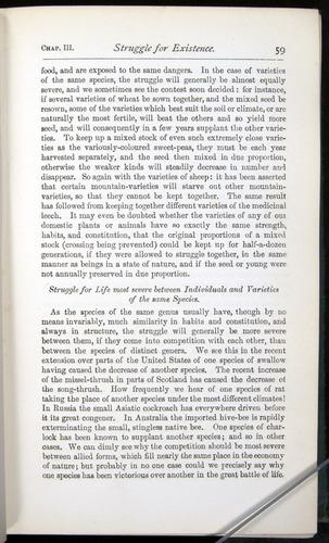 Image of Darwin-F401-1876-059