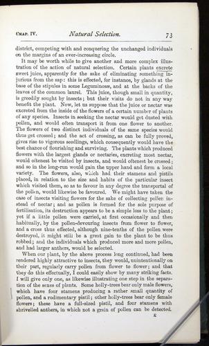 Image of Darwin-F401-1876-073