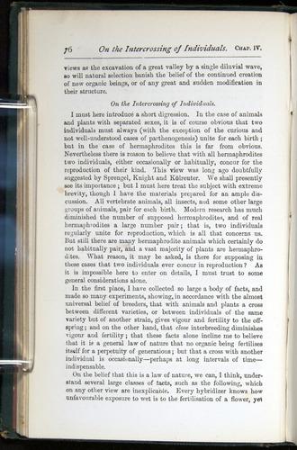 Image of Darwin-F401-1876-076