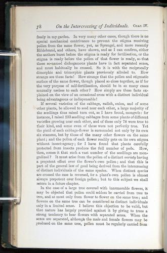 Image of Darwin-F401-1876-078