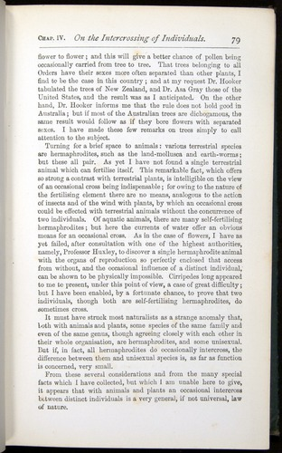 Image of Darwin-F401-1876-079