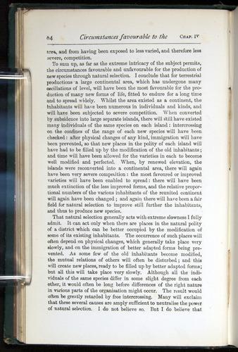 Image of Darwin-F401-1876-084
