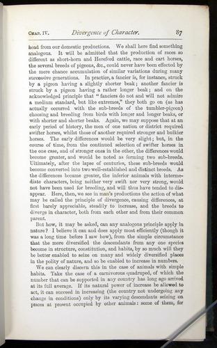 Image of Darwin-F401-1876-087