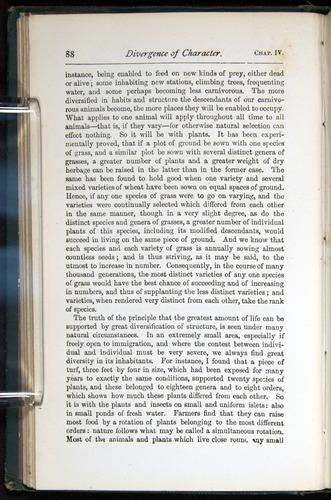 Image of Darwin-F401-1876-088