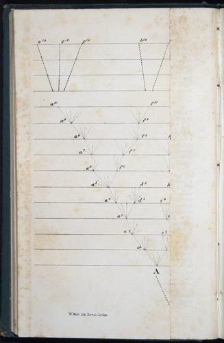 Image of Darwin-F401-1876-090-f1-d