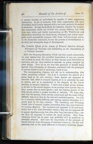 Image of Darwin-F401-1876-090