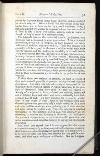 Image of Darwin-F401-1876-091