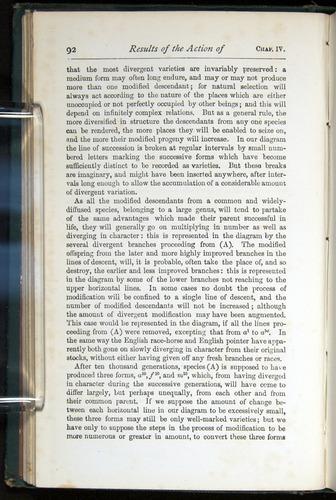 Image of Darwin-F401-1876-092