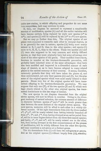 Image of Darwin-F401-1876-094