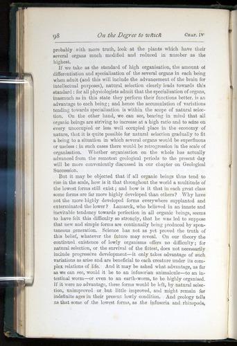 Image of Darwin-F401-1876-098
