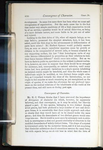 Image of Darwin-F401-1876-100