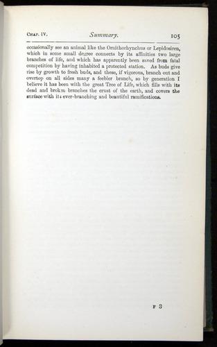 Image of Darwin-F401-1876-105