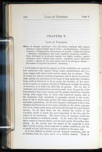 Image of Darwin-F401-1876-106