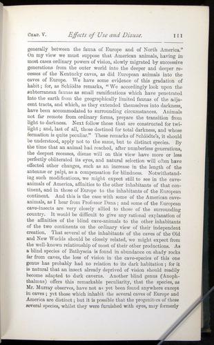 Image of Darwin-F401-1876-111