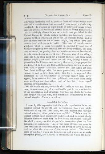 Image of Darwin-F401-1876-114