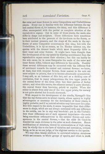 Image of Darwin-F401-1876-116