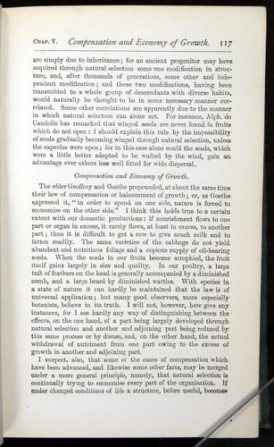 Image of Darwin-F401-1876-117