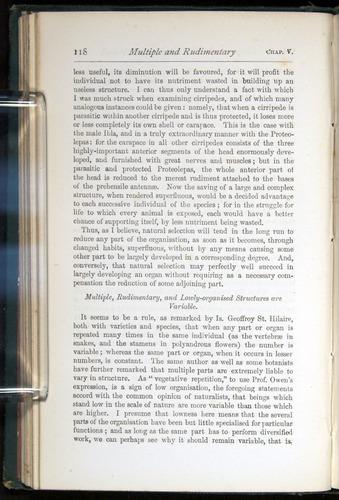 Image of Darwin-F401-1876-118