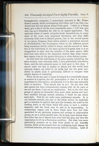 Image of Darwin-F401-1876-120